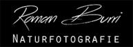Logo E-Mail Signatur_klein